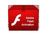 services-flash